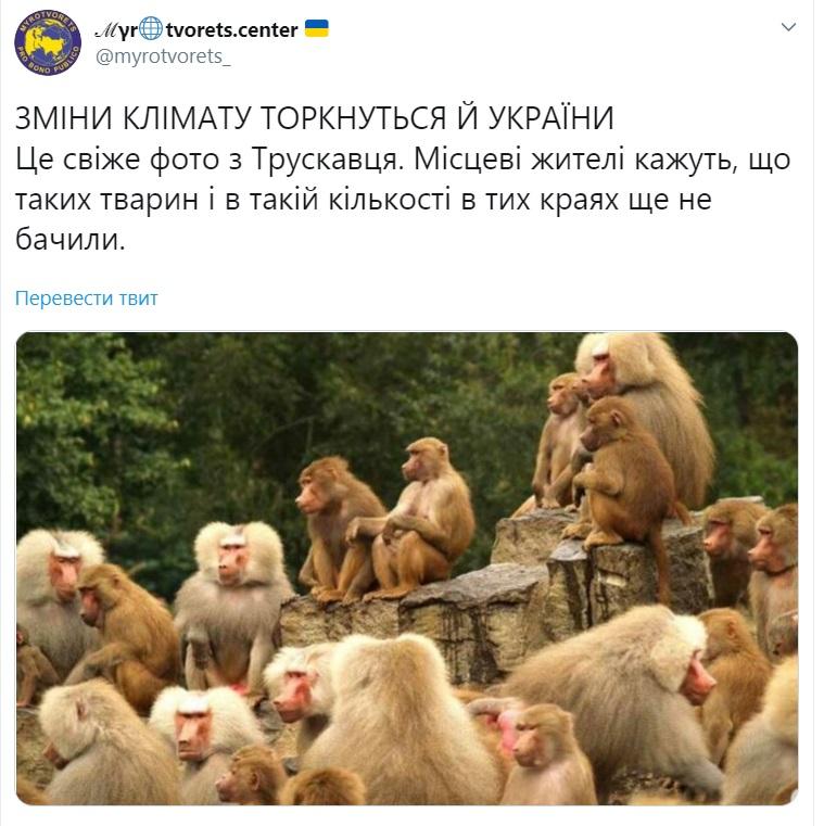 """У мережі жорстко висміяли навчання депутатів від """"Слуги народу"""" в Трускавці. ФОТО"""