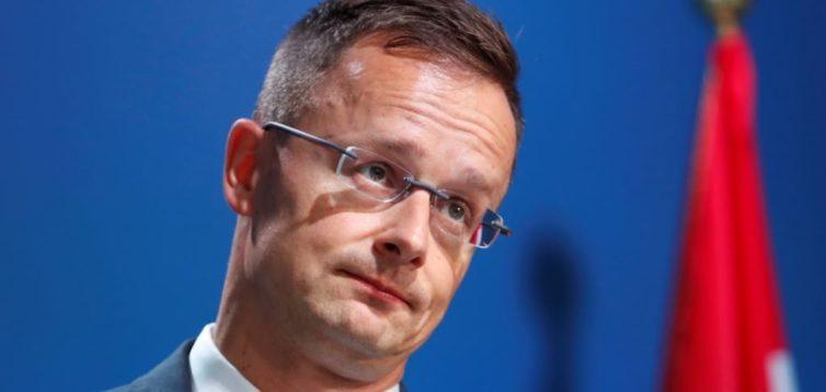 Голова МЗС Угорщини приїхав на Закарпаття агітувати за кандидата в нардепи
