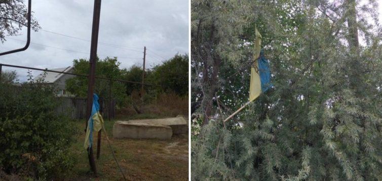 """Бойовики """"ЛНР"""" вільно заходять в Станицю Луганську, де зривають і викидають українські прапори. ФОТО"""