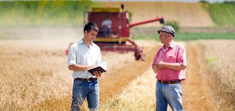 """""""Слуги народу"""" пропонують ввести податок на пай для фермерів у 6 тис грн з гектара"""