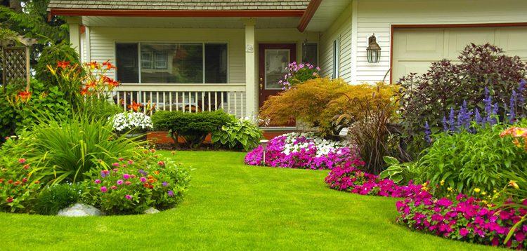 (Рус) Биопрепараты на защите вашего сада