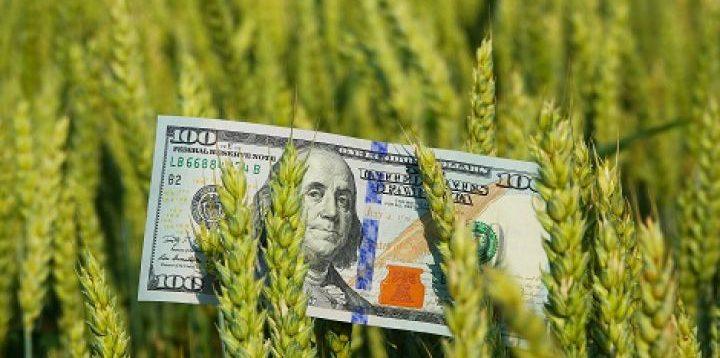 Україна експортувала рекордні 57 млн тонн зернових