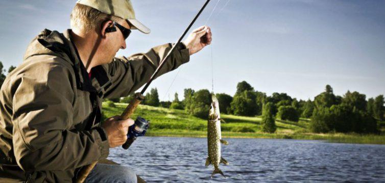 (Рус) Крилевая мука – эффективная добавка в прикормку для рыбалки