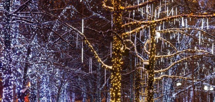 (Рус) Оформление городских парков к праздникам