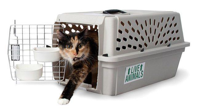 (Рус) Где купить качественную переноску для котов и собак
