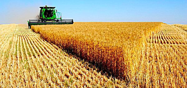 (Рус) Сайт Агротендер – самый крупный аграрный портал Украины