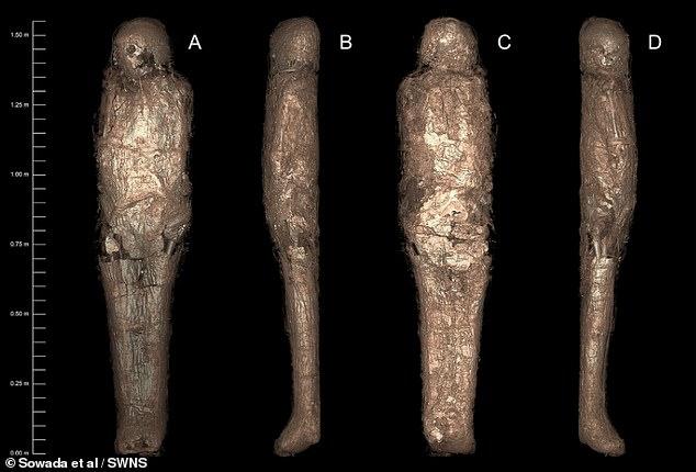 Вчені за допомогою томографії розкрили таємницю давньоєгипетської мумії. ФОТО