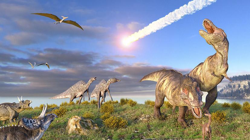 Вчені розкрили загадку, чому великих динозаврів було більше, ніж маленьких