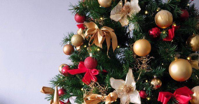 У Запоріжжі чоловік викинув новорічну ялинку лише 31 березня