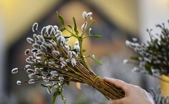 Українців попереджають про холод та дощі у Вербну неділю