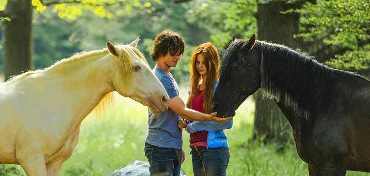 (Рус) Почему стоит сделать прогулку на лошади