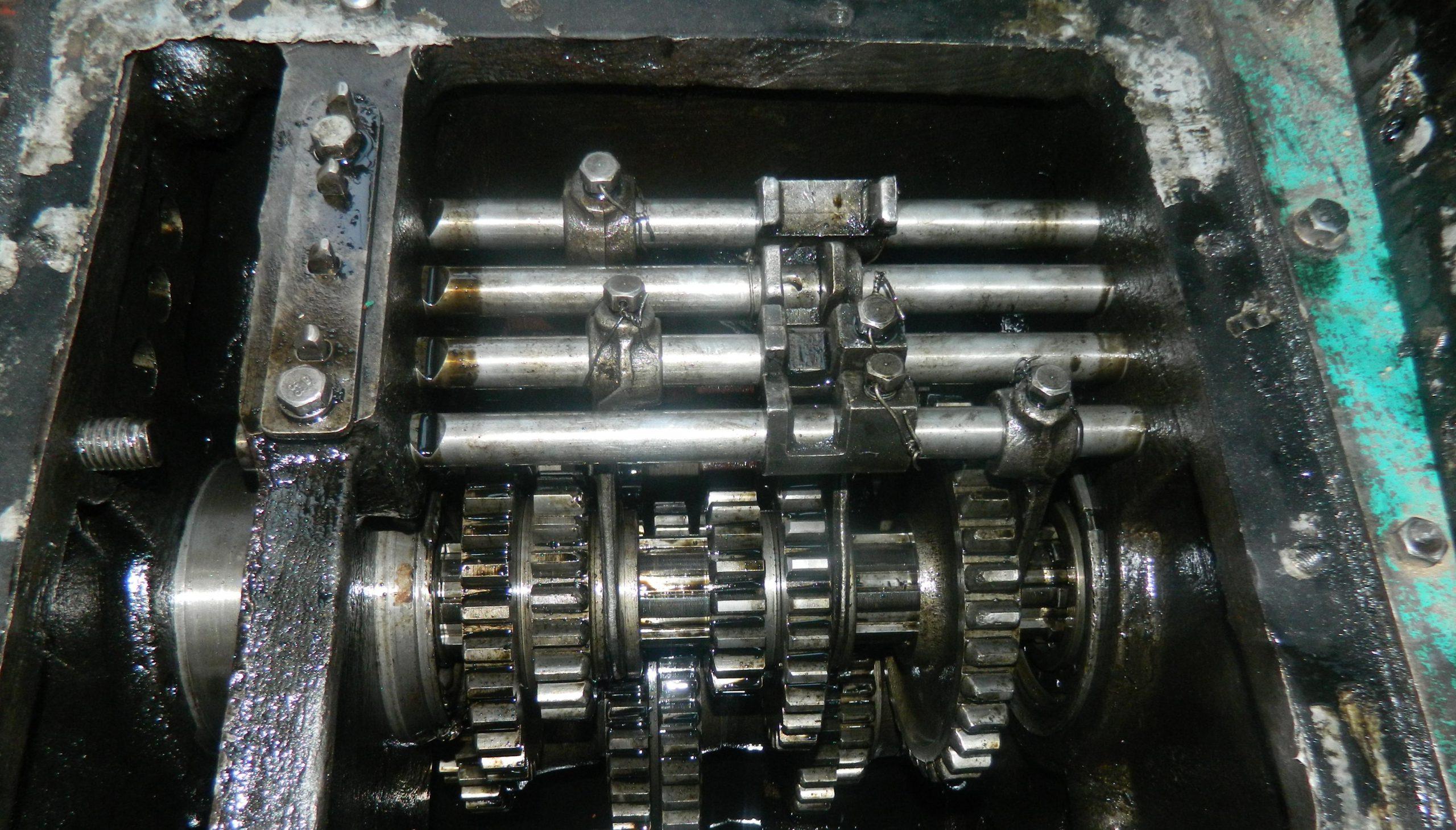 dscn5738