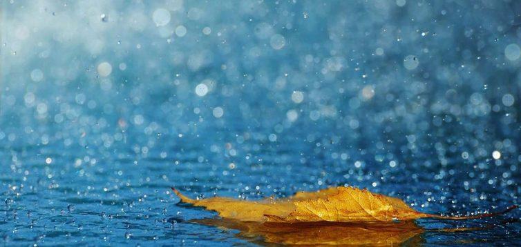 1 вересня в Україні очікуються дощі