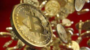 Стало відомо, скільки грошей втратили власники забутих криптогаманців