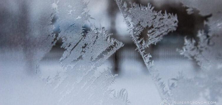 У жовтні морози в Україні можуть подекуди досягти -23 градусів