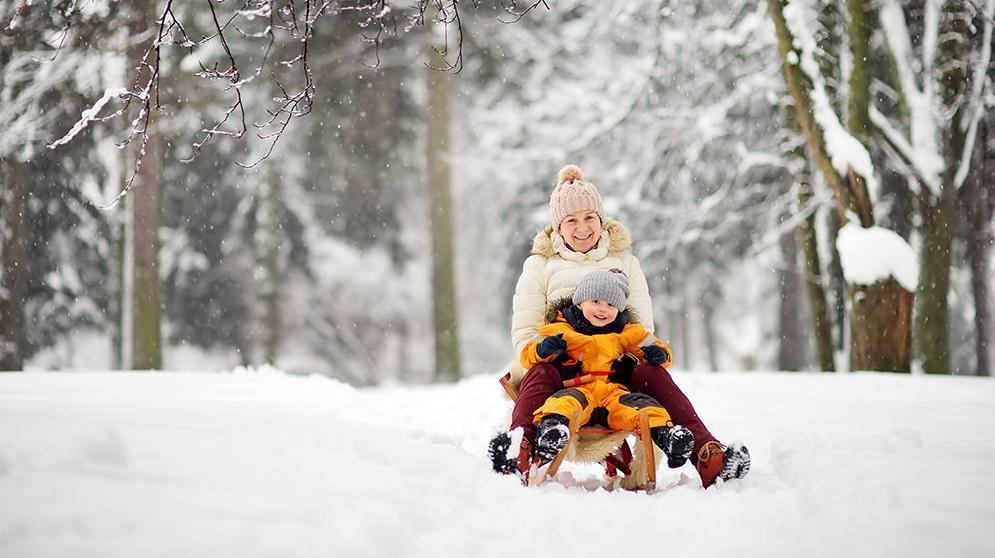 В Україні прогнозують холодну зиму з раннім снігом